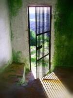 Portas / Janelas