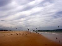 GeoFoto Setembro 2014: Praia_6