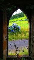 GeoFoto Tema Portas / Janelas_3