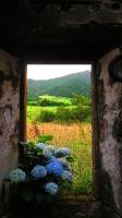 GeoFoto Tema Portas / Janelas_4
