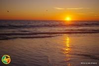 GeoFoto Setembro 2014: Praia_1