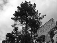 #01 Ecovia Tâmega - Estação Livração