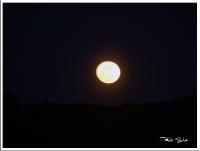 Reflexos Lunares